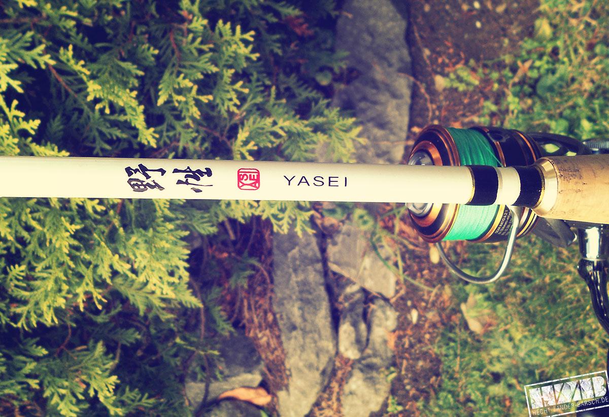 yasei-Hauptbild